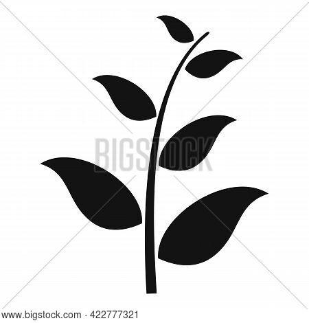 Essential Oils Field Plant Icon. Simple Illustration Of Essential Oils Field Plant Vector Icon For W