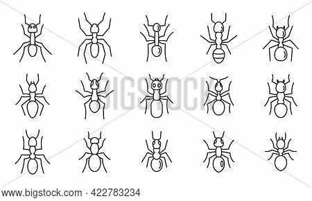 Wild Ant Icons Set. Outline Set Of Wild Ant Vector Icons For Web Design Isolated On White Background