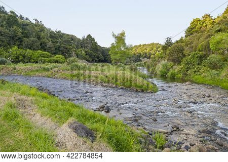 Idyllic Natural Waterside Scenery At A River In The Auckland Region At The North Island Of New Zeala