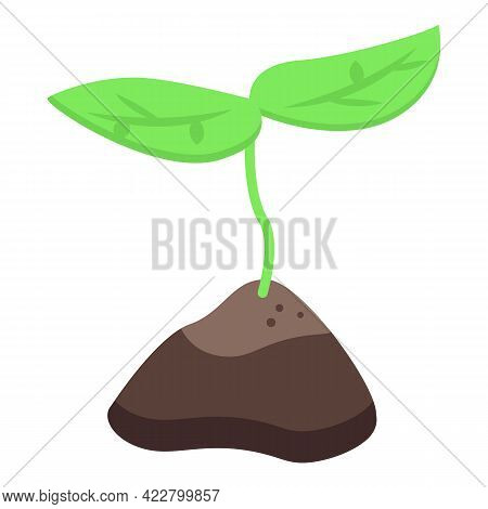 Grow Plant Icon. Isometric Of Grow Plant Vector Icon For Web Design Isolated On White Background