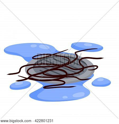 Drain In Plumbing. Tangle Of Hair In Sink Hole On Floor. Element Of Water Supply System. Blue Puddle