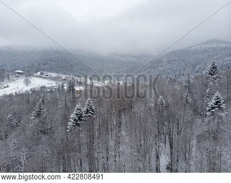 Aerial View Of A Mountain Village With Hills Covered In Snow And Pine Forest In Winter. Yaremche, Uk
