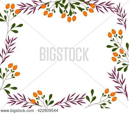 Rectangular Frame Template With Branches Of Leaves And Orange Berries. Nature Theme. Vector Illustra