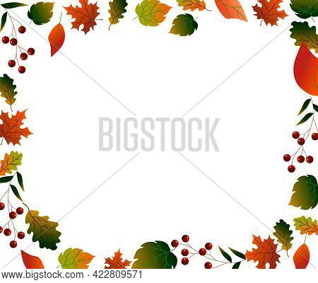 Horizontal Frame. Autumn Leaves. Vector Illustration Isolated On White Background. For Use In Postca
