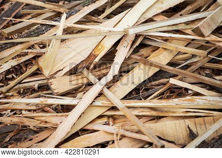 Lumber, Planed Boards. Carpenter Texture And Background. Wood Material For Industrial Construction
