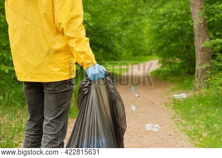 People Volunteer Collect Garbage In Forest. Volunteer Clean Up Trash A Park Background. Ecology Poll