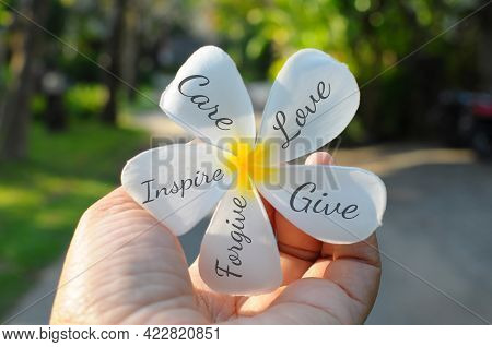Hand Holding A White Bali Frangipani Flower With Positive Words Written On The Petals - Care, Love,