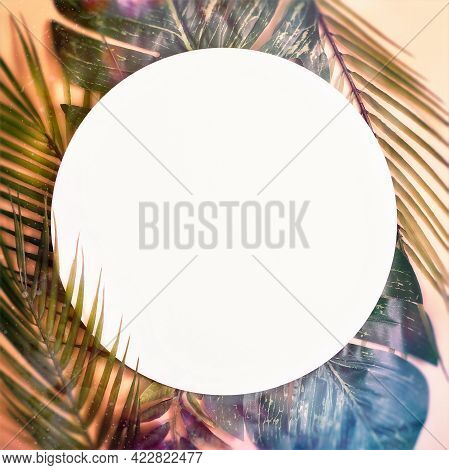 Minimal Summer Concept With Palm Tree Leaf. Creative Copyspace With Paper Frame. Colorful Spring  Ba