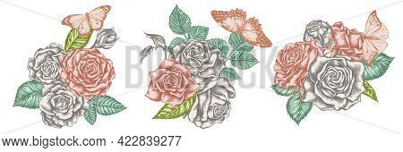 Flower Bouquet Of Pastel Red Lacewing, Great Orange-tip, Plain Tiger, Roses Stock Illustration