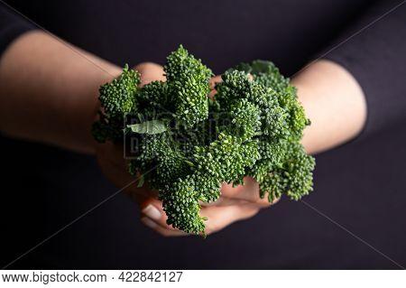 Woman Holding Tenderstem Broccoli Bundle. Fresh Raw Vegetables. Healthy Food.