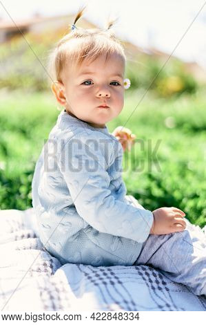 Cute Little Girl With Two Ponytails Holds Fruit Chips In Her Hand, Sitting On A Blanket Among The Gr