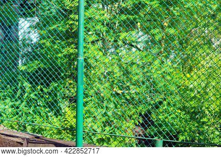 Mesh Panel Fencing Hanging On Metal Painted Posts, Outdoor Shot