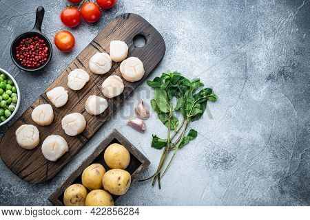 Raw Fresh Scallops With Ingredient, Flat Lay, On Grey Background  With Space For Text