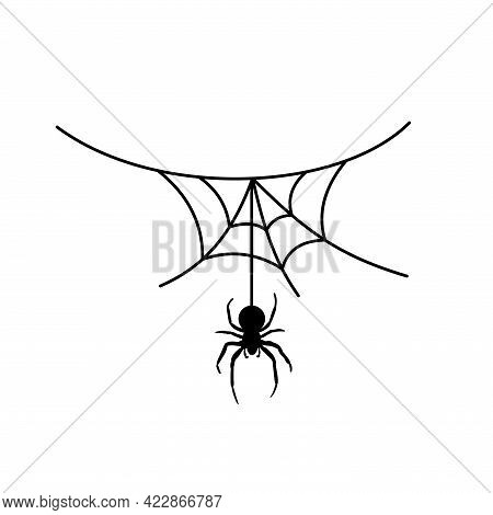 Scary Spider Web Background. Cobweb Background With Spider. Halloween Horror Decoration. Spooky Fear