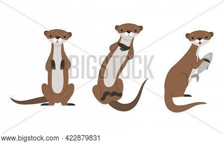 Set Of Cute Weasel, Adorable Funny Wild Animal Cartoon Vector Illustration