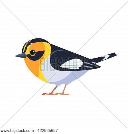 Blackburnian Warbler Is A Small New World Warbler. Setophaga Fusca. Bird Cartoon Flat Style Beautifu
