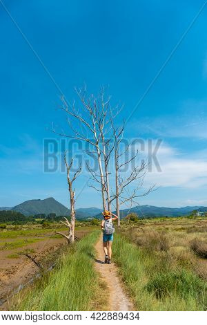 A Young Woman Enjoying The Landscape Of The Urdaibai Marshes, A Bizkaia Biosphere Reserve Next To Mu
