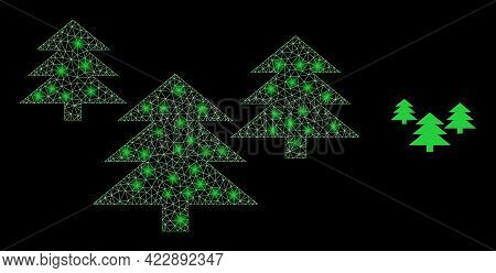 Illuminated Mesh Fir Tree Forest With Glowing Spots. Vector Carcass Based On Fir Tree Forest Icon. I