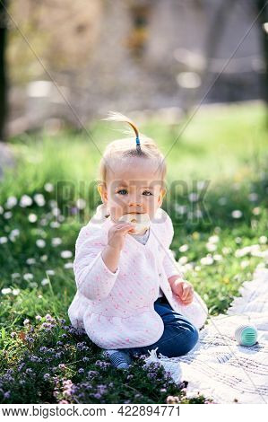 Little Girl With A Ponytail On Her Head Gnaws A Fruit Chip While Sitting On A Green Lawn Among Flowe