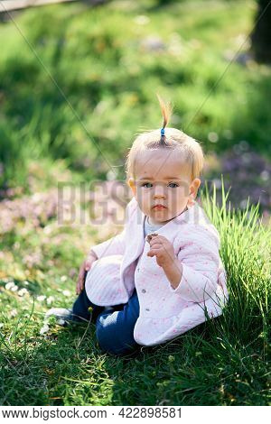 Little Girl With A Ponytail Sits On A Green Lawn