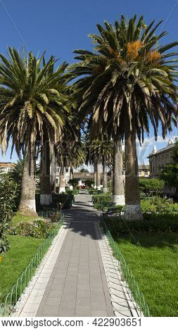 Panoramic View Of San Francisco Park Full Of Palm Trees In Downtown Latacunga On A Sunny Day. Ecuado
