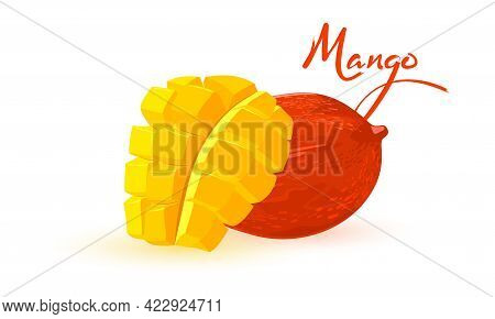 Sweet And Healthy Summer Fruit, Organic Farm Product, Seasonal Snack. Vector Raw Eating, Mellow Juic