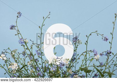 Number Six Among Blue Flowers On Blue Background. Birthday, Anniversary, Jubilee Concept. For Invita