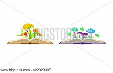 Open Book With Different Fabulous Mushrooms Vector Set
