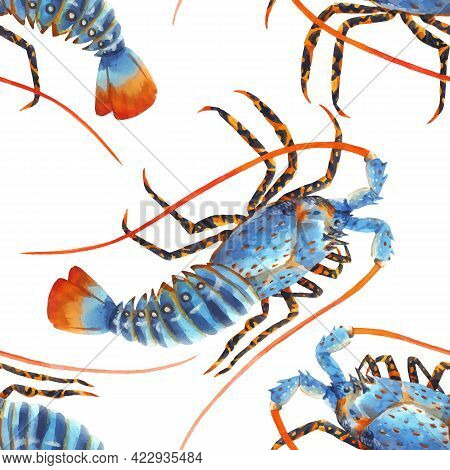 Beautiful Vector Seamless Sea Life Pattern With Watercolor Hand Drawn Rainbow Lobster. Stock Illustr