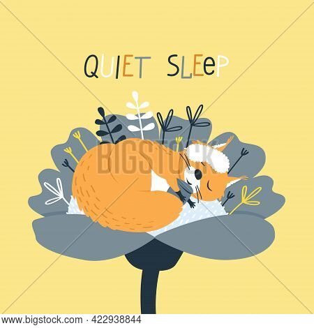 A Cute Squirrel Sleeps In A Sleep Mask Inside A Flower. The Squirrel Hugs Its Favorite Nut. Funny Ca