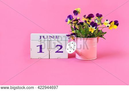 Calendar For June 12 : The Name Of The Month Of June In English, Cubes With The Number 12, A Bouquet