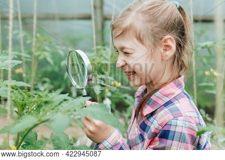 Happy Children Girl With Loupe Studying Learning Nature Outside. Child Education Concept. Little Cur