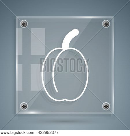 White Plum Fruit Icon Isolated White Background. Square Glass Panels. Vector
