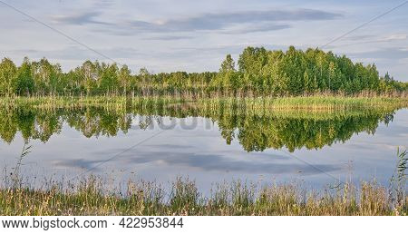 Beautiful Summer Rural Landscape. On Smooth Water Surface Of Pond Reflecting Green Trees And Grass.