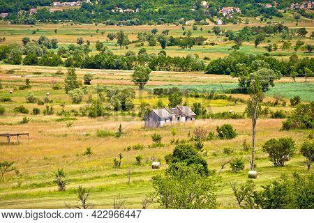 Idyllic Green Landscape Of Dalmatian Zagora Near Vrlika, Beauty Of Croatia
