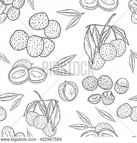 Lychee Seamless Pattern, Sketch Hand Drawing Vector. Repeating Background With Lychee, Whole Fruit A