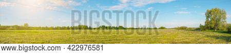 Panorama Of A Large Mown Meadow In Front Of A Forest In The Sunlight