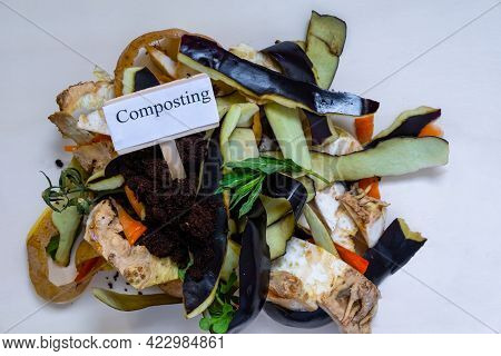 Ecological Waste, Food And Household Waste For Making Compost. We Collect Food Waste For Compost In