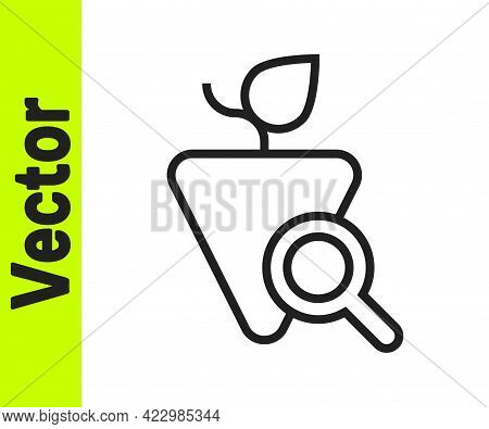 Black Line Grapes Icon Isolated On White Background. Selection Of Grapes. Vector