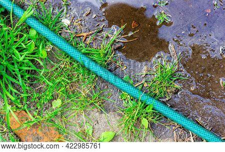 Watering Hose. Garden Work. Garden Watering Hose.