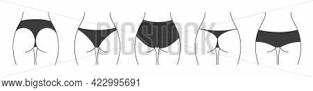 Different Types Of Panties. Collection Of Lingerie Back View. Vector Silhouettes Of Female Underwear