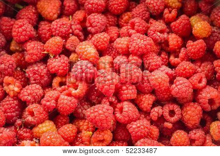 Fresh Raspberries Background