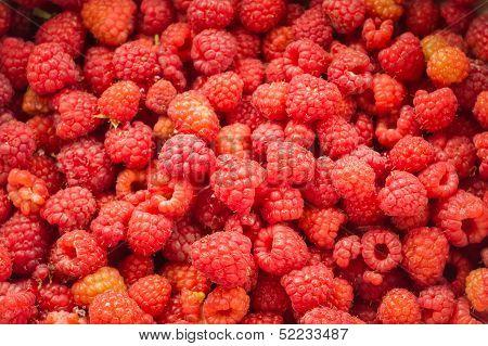 Fresh Raspberries Background