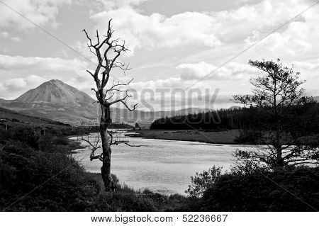 view of the Errigal mountains and countryside in county Donegal Ireland in black and white poster