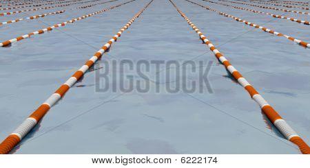 Swimming Path
