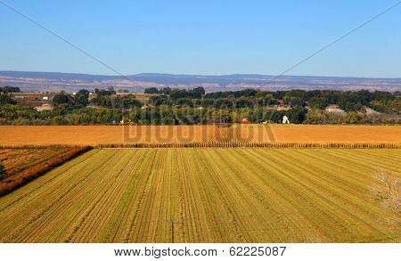 Harvested wheat fields areal view