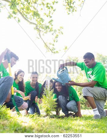 Group of environmentalists watering plant in park