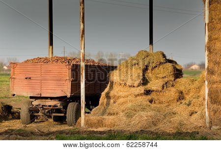 Storage Of Hay Bales