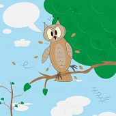 Surprised owl with speech bubble. This is file of EPS10 format. poster