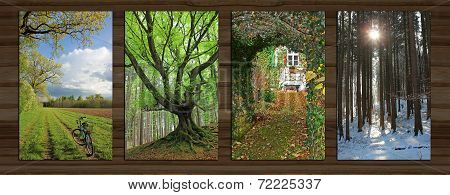 Collage - Four Seasons On Wooden Board Background - Iv